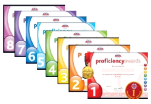 Proficiency_badges_1